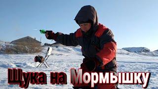 Рыбалка 2020 ЩУКА на МОРМЫШКУ в ГЛУХОЗИМЬЕ