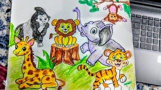 zoo draw animals step drawing