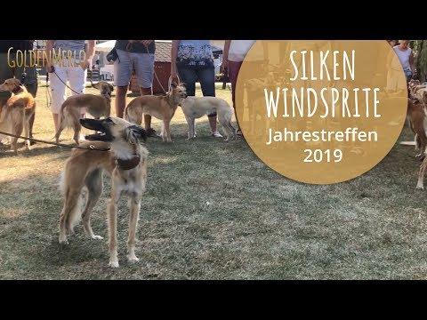 Silken Windsprite Club e.V. Jahrestreffen 2019 in Alsfeld