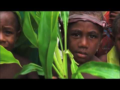 SABL: A Misconceived Development Perception in Papua New Guinea