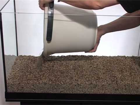 Step By Step: How To Set Up An Fish Tank Aquarium, Planted Tanks
