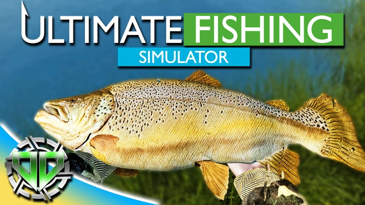 best bait for carp fishing simulator