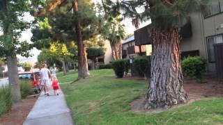 Города Фримонт и Сан-Хосе Калифорния Fremont / San Jose California