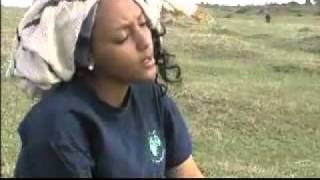Repeat youtube video Galfatan siin Jedha - Bilisee Karrasaa