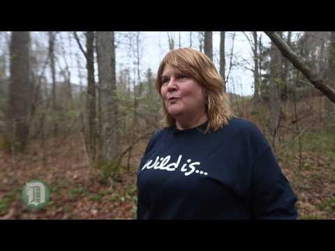 Digging for ramps in West Virginia