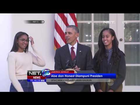 Abe dan Honest Diampuni Presiden Barack Obama dalam Upacara Pengampunan Kalkun -NET5 Mp3