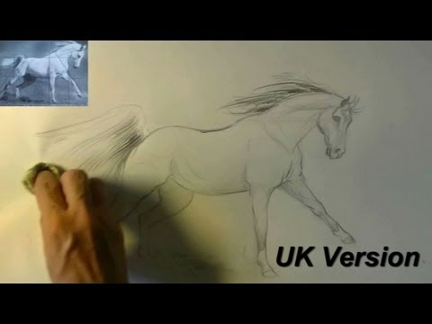 How To Draw A Running Horse Animal Drawings 8 Youtube