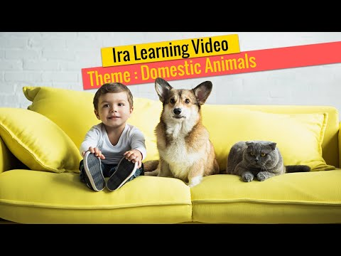 Domestic Animals for kids | Domestic Animals | Learn Animal Names for Kids