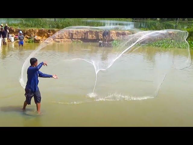 Unbelievable He Cast Net and Catch Big Fish