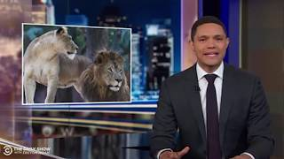 A FOLLOW UP ON TREVOR NOAH'S QUESTIONS AND MINE TOO// FUNNY QUESTIONS
