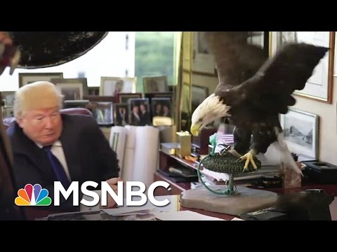The United States of Awkward: Election Season 2016, Unfiltered | MSNBC