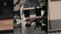 Brand bij villa in Capelle  aan den IJssel | Video: Suzanne de Vries