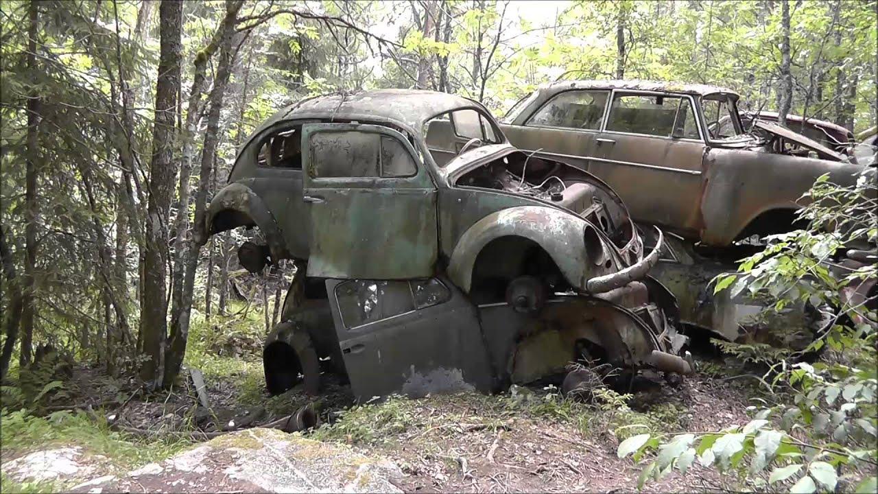 Car Graveyard New Zealand