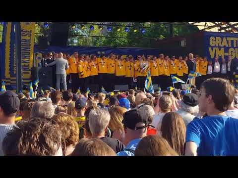 Tre kronor VM-guld Kungsträdgården 2018-05-21