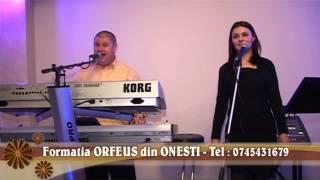 Formatia ORFEUS din ONESTI - 2014 - Colaj usoara + populara- Tel: 0745431679 - clip 23.mkv
