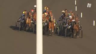 Vidéo de la course PMU PRIX DE LILLE