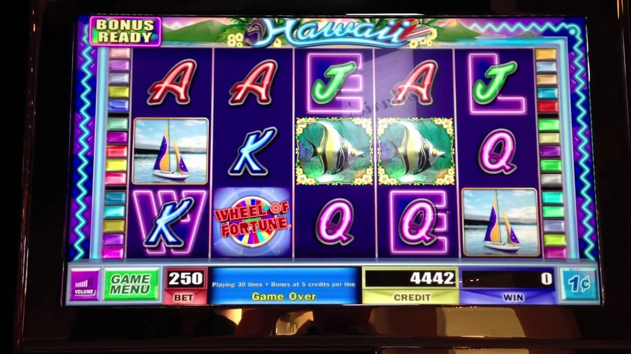Hawaii gambling machines little creek casino hotel shelton