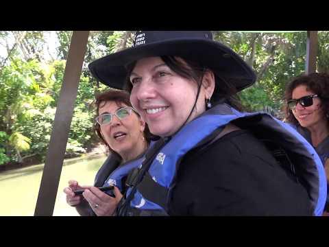Birds -A Visit in Costa Rica  HD  ציפורים - טיול בקוסטה ריקה