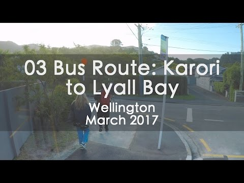 03 Bus Route From Karori Park to Lyall Bay, Wellington - Timelapse