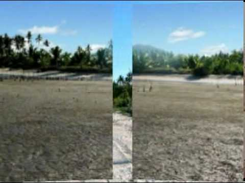 Roxas, Palawan - A perfect beachfront for retirement 4 SALE - www.palawanproperty.com