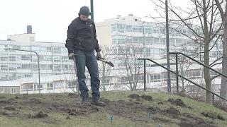 Arkeologer letar efter mordkulorna på Rosengård