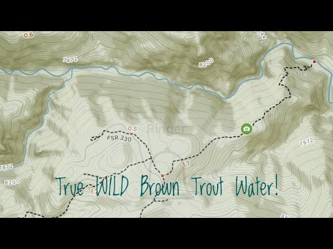 Dry Fly Fishing - Wild Trout Water On The North Fork St. Vrain River, Colorado Sep 30, 2019