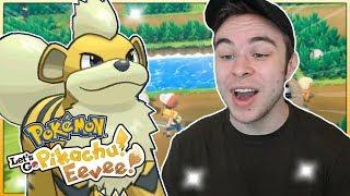 FIRST SHINY POKEMON! Pokémon Let's Go Pikachu & Eevee Shiny Growlithe Reaction!