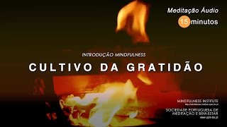 MINDFULNESS - Cultivo da Gratidão 15m (432Hz)