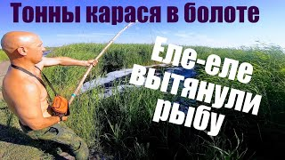 Рыбалка на паук 2021. Наташа поймала 100кг ! Рыбалка на карася весной или как девчонки рыбу ловят
