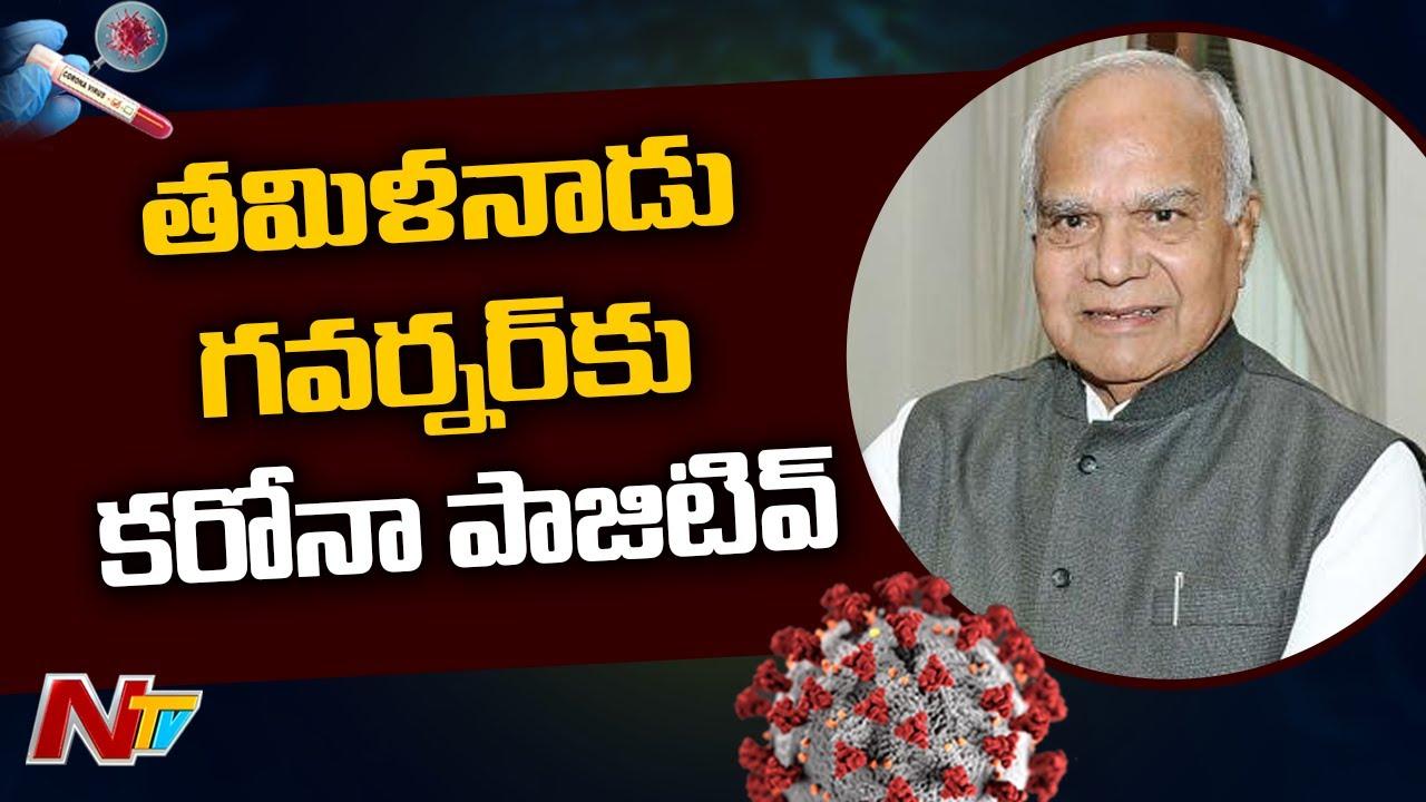 Tamilnadu Governor Banwarilal Purohit Tests positive For Coronavirus | NTV