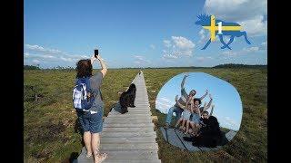 Wohnmobil-Schweden-Rundreise#1: erste Eindrücke