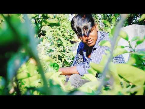 Pilla Pillagadu Break Up Song.. Rajesh Kanni Btech Lover😘