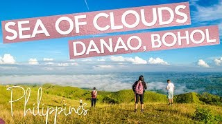sea of clouds danao bohol philippines how to go there