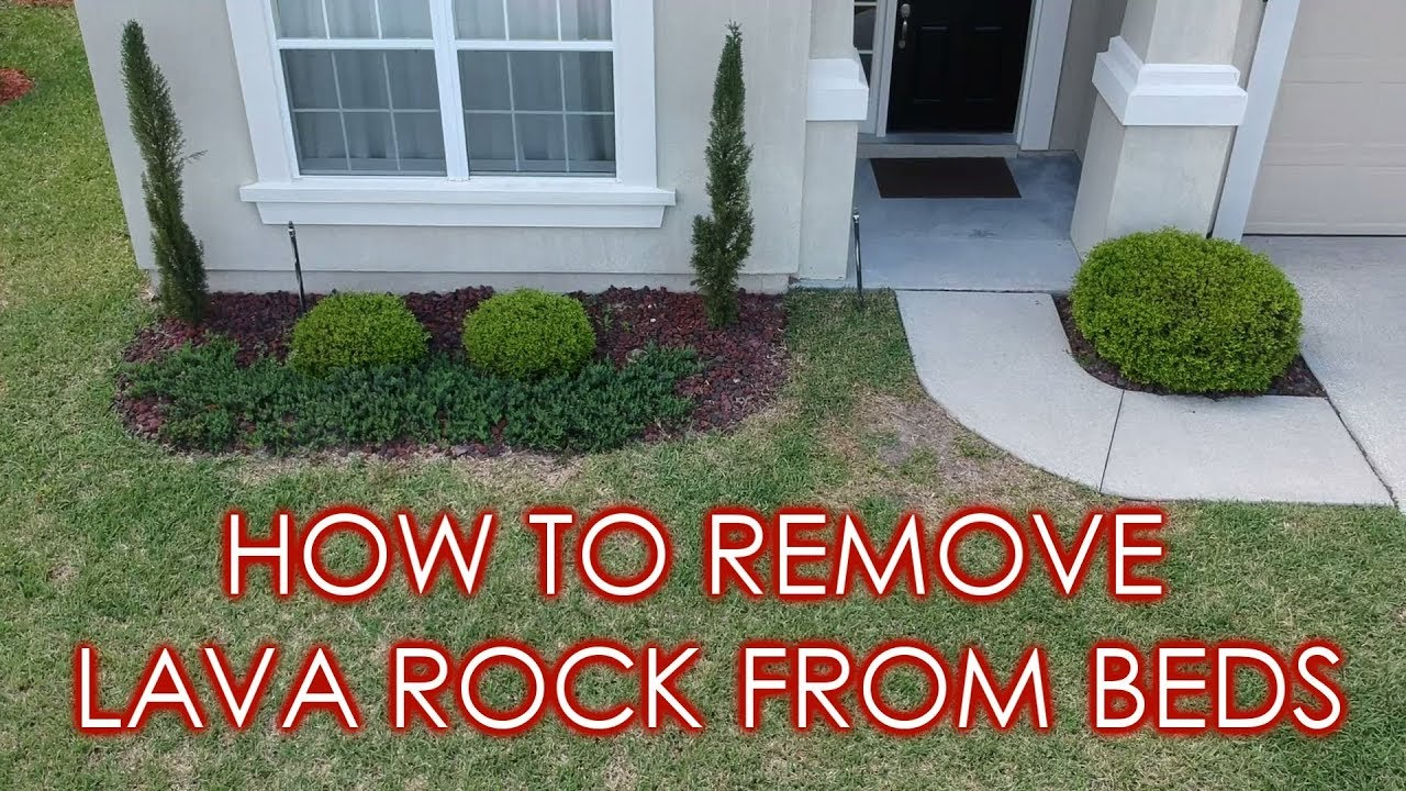 How To Remove Lava Rock Prepare Landscape Beds For Mulch Youtube
