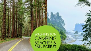 Washington coast road tŗip | Camping, Beaches and a Rain Forest