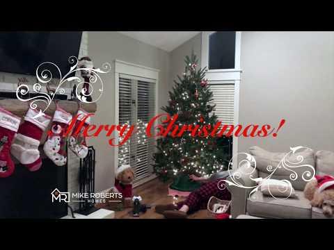Annual Christmas Tree 🎄 Decorating!
