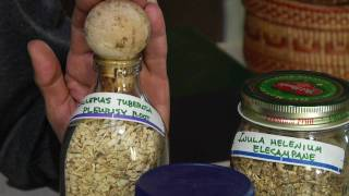 Alternative Medicine Herbal Remedies : Natural Treatments for Asthma Symptoms
