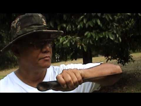 Lading Puaka Trailer v2 -  Specialized Weapon in Malay Martial ArtsTraining Video