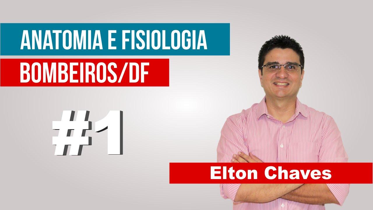 Anatomia e Fisiologia – CBMDF 2016 – Prof Elton Chaves - YouTube