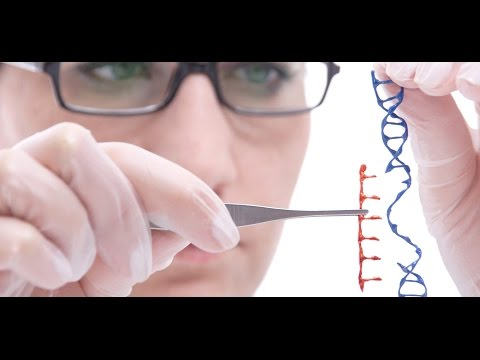 Rewriting DNA: Big Returns from Gene Editing