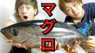 【気まぐれクック 実写化】巨大マグロを1本丸ごとさばいてみた!! thumbnail
