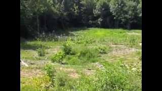 NEEM Farm in Durham NC, USA