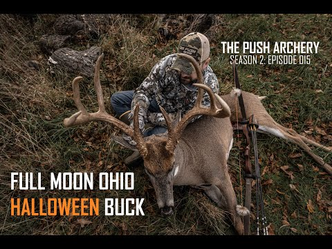FULL MOON OHIO BUCK WITH A RECURVE! – Traditional Bowhunting – Season 2: Episode 015