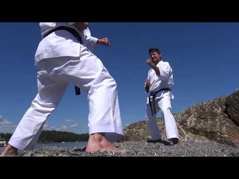 Best Karate - Shobu Premium