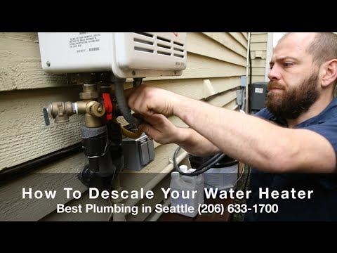 How To Descale A Tankless Water Heater Best Plumbing And