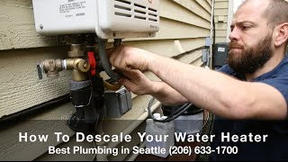 How to Descale A Tankless Water Heater - Best Plumbing and Sewer (206) 633-1700