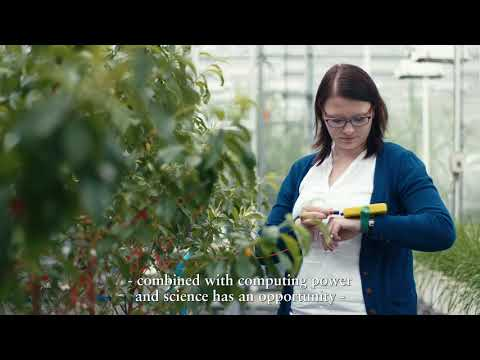Yara digital farming | Yara International