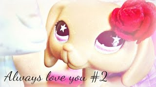 Littlest Pet Shop: Always love you #2 (Bójka)