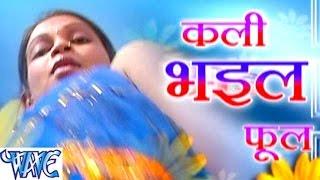 Download Hindi Video Songs - कली भईल फूल  - Kali Bhail Phool - Bhojpuri Hot Songs HD
