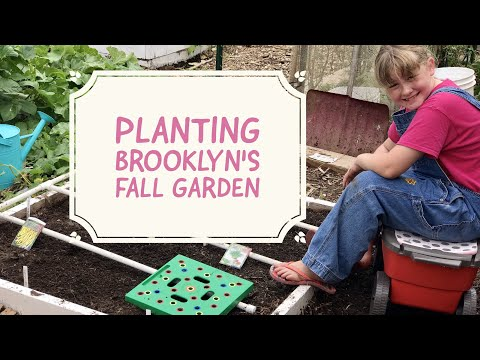 Planting Brooklyn's Fall Garden of Carrots, Yellow Beans, Green Beans, and Chives!